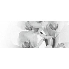 Панно 20x50 Элегия 7 тип 2 белый